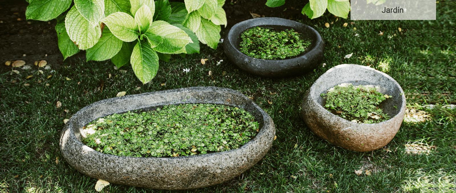 9sept-Kuyen-Jardin