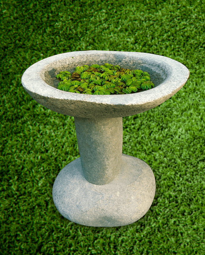 Pileta de jardín